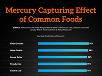 Mercury Capturing Effect of Common Foods